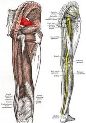 Spinal Decompression Piriformis Syndrome